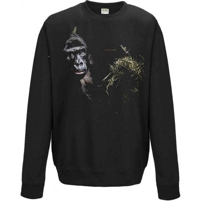 Faded Eating Ape Sweatshirt