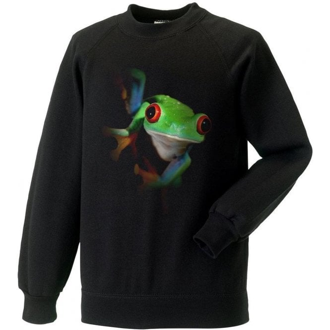 Faded Frog Sweatshirt