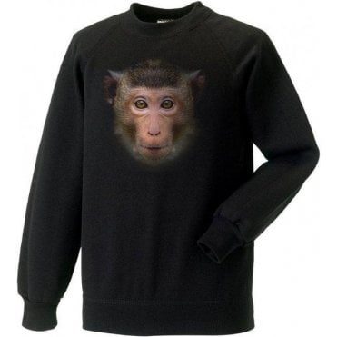 Faded Monkey Kids Sweatshirt