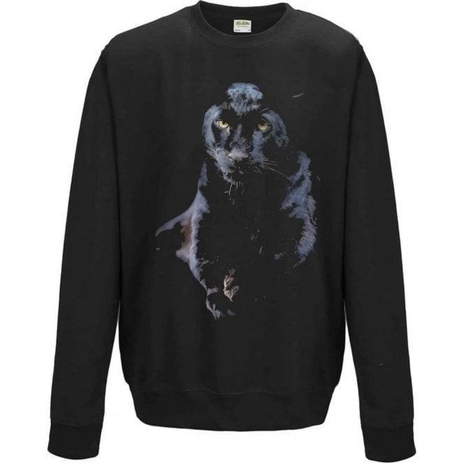 Faded Puma Sweatshirt
