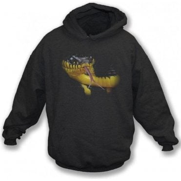 Faded Snake Hooded Sweatshirt