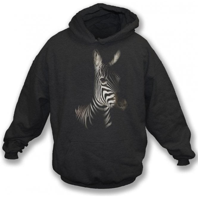 Faded Zebra Kids Hooded Sweatshirt