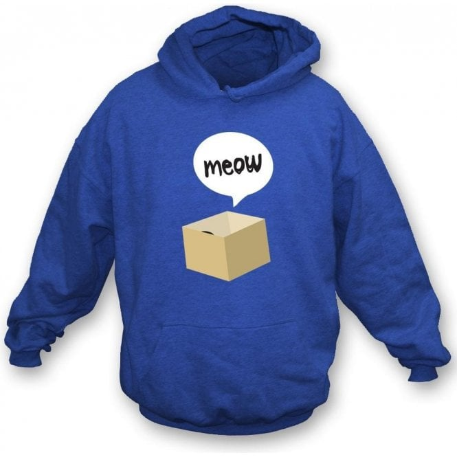 Meow Cat In A Box Kids Hooded Sweatshirt