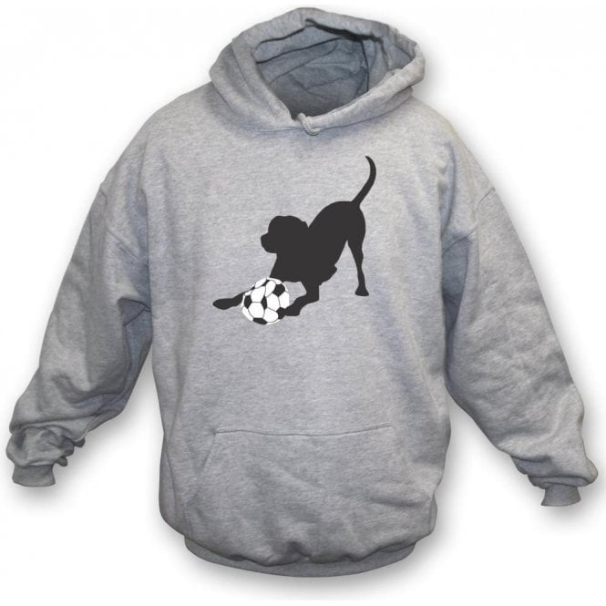Proper Fetch Hooded Sweatshirt
