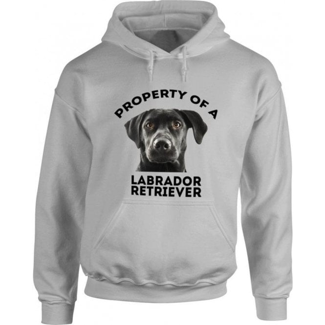 Property Of A Labrador Retriever (Grey) Kids Hooded Sweatshirt