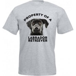 Property Of A Labrador Retriever (Grey) T-Shirt