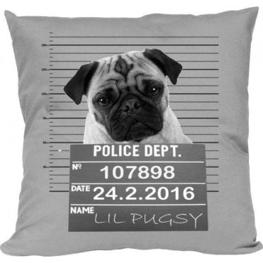 Pug Shot Cushion